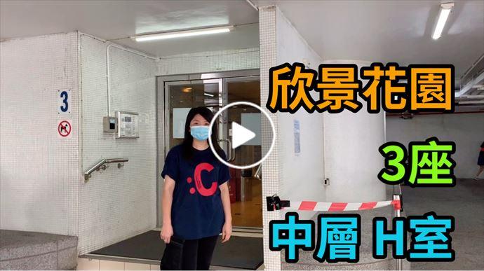 鯉景/嘉亨/逸濤/西灣河 欣景花園 3座 中層 H室