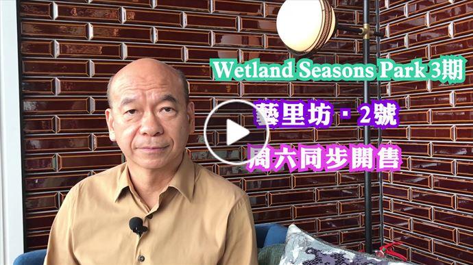 新盤頻道 Wetland 3,藝里坊2號 首輪銷售評析 中原地產亞太區副主席兼住宅部總裁