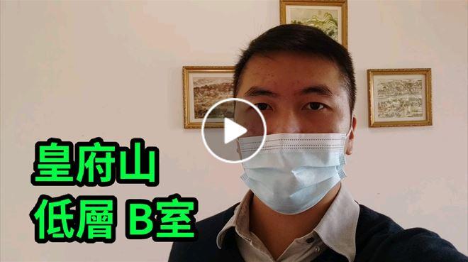 上水/粉嶺 皇府山 低層 B室