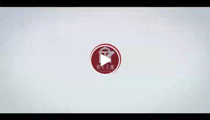 深圳龍華和平天地商舖項目