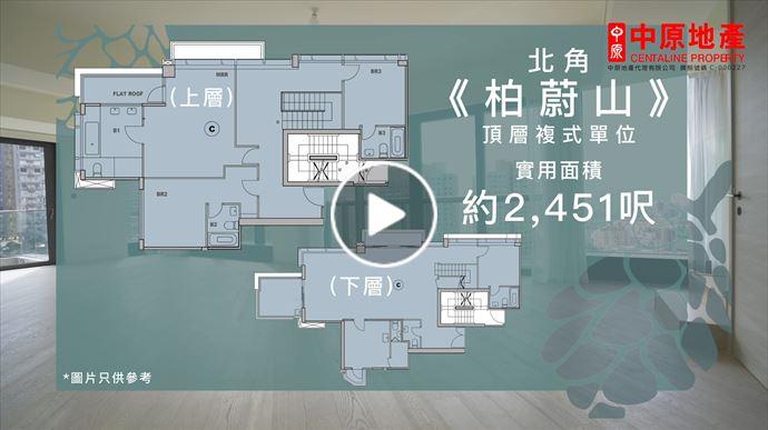 蔥翠繁盛環抱室內 - 《柏蔚山》頂層複式單位 (物業編號:DQV513)
