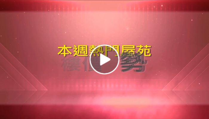 中原城市領先指數 12/4/2019